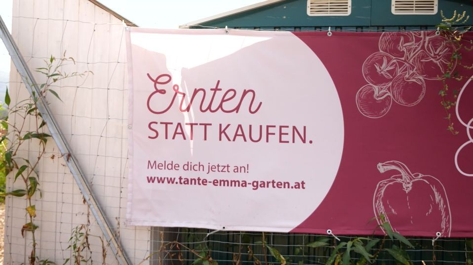 tante-emma-garten_transparent-01.jpg